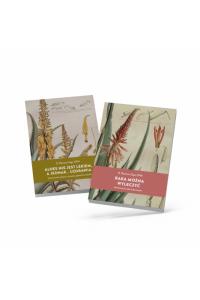 Set of 2 books Father Romano Zago